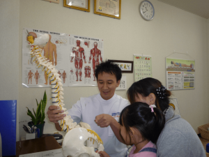骨格模型を使って体の歪みの説明